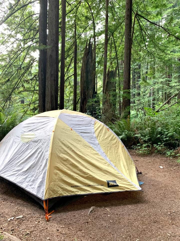 tent set up on site in Mill Creek Campground