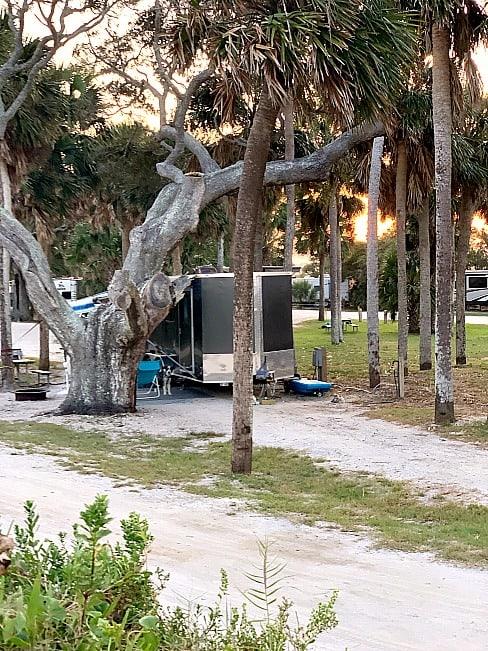 cargo trailer camper in Edisto Beach campsite with palm trees