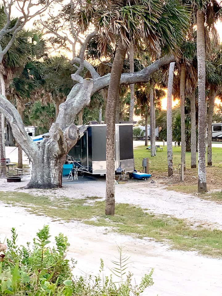 cargo trailer camper in Edisto Beach campsite with palm trees